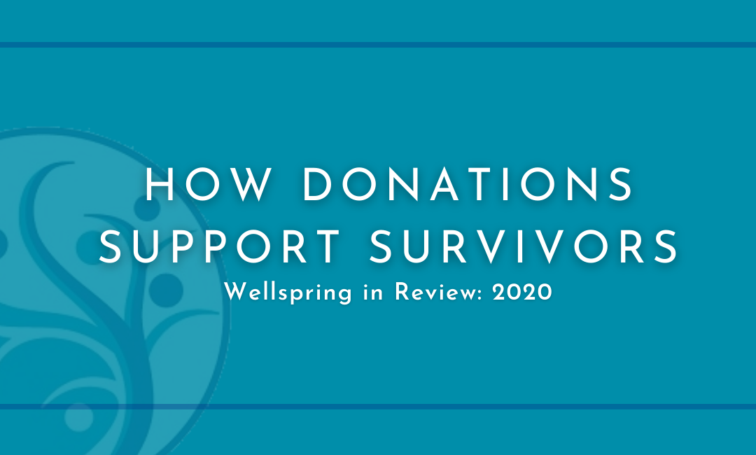 How Donations Support Survivors Wellspring in Review: 2020 with logo