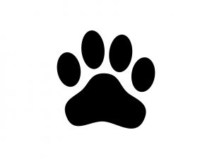 Paw print icon in black